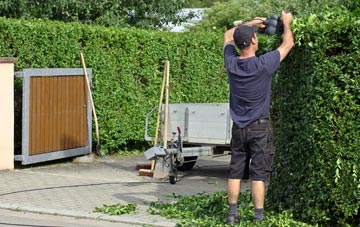 professional Raleigh hedge cutting services