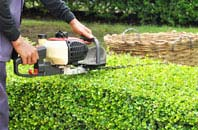 Raleigh hedge trimming services