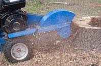 compare tree stump grinding costs